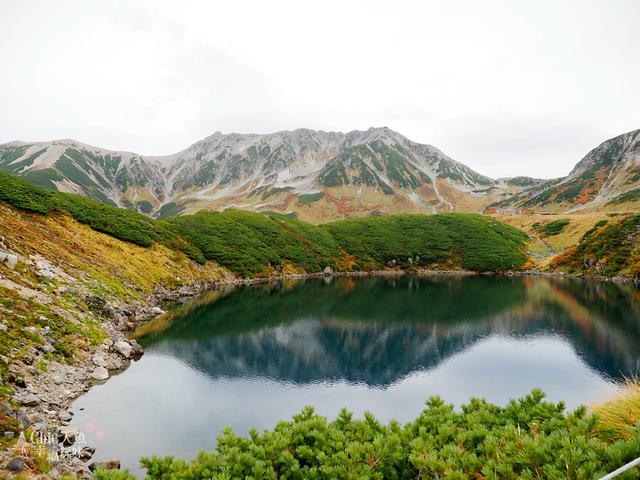 立山-4-室堂平 (88).jpg - 富山県。立山黑部