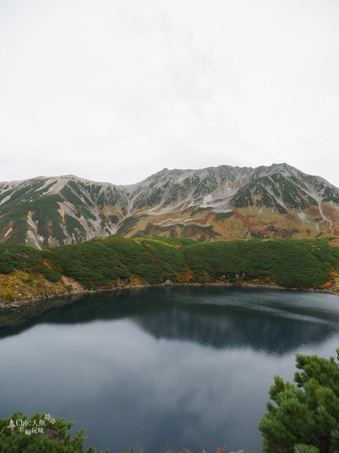 立山-4-室堂平 (71).jpg - 富山県。立山黑部