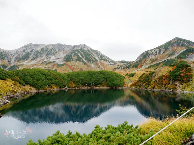 立山-4-室堂平 (89).jpg - 富山県。立山黑部