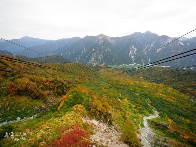 立山-6-搭纜車前往黑部平 (3).jpg - 富山県。立山黑部