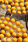 【國內旅遊】柿子紅了。最美的九降風橘@新埔衛味佳柿餅園:新埔衛味佳柿餅園 (71).jpg