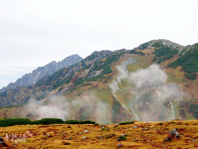 立山-4-室堂平 (138).jpg - 富山県。立山黑部