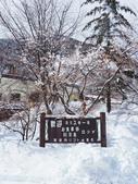 日光奧奧女子旅。奧日光散策SKI:奧日光-湯元溫泉SKI場 (52).jpg