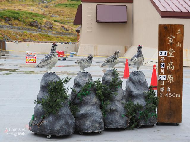 立山-4-室堂平 (142).jpg - 富山県。立山黑部