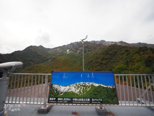 立山-6-搭纜車前往黑部平 (25).jpg - 富山県。立山黑部