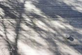 星のや富士VS赤富士:HOSHINOYA FUJI 星野虹夕諾亞富士-園區客房區 (74).jpg
