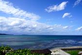 北海道道北。島旅。礼文島:金田海岬-斑海豹曬日光浴 (38).jpg