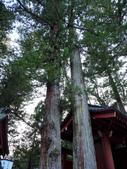 日光旅。日光東照宮:二荒山神社 (6).jpg