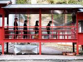 日光旅。日光東照宮:二荒山神社 (8).jpg