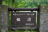 北海道道北。島旅。利尻島:利尻島-姬沼 (14).JPG