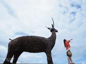 台東IG景點。比西里岸部落  牧羊女:比西里岸部落 (36).jpg