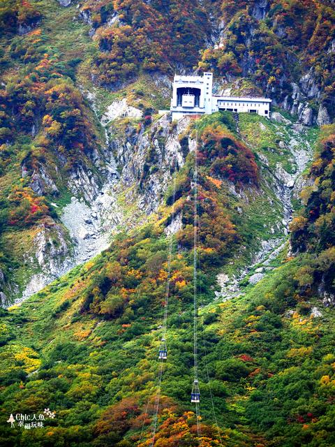 立山-6-搭纜車前往黑部平 (30).jpg - 富山県。立山黑部