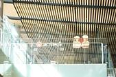 JR東日本上信越之旅。新潟市觀光-萬代橋。Mediaship。Pia萬代:新瀉日報-MEDIASHIP頂樓展望台 (6).jpg