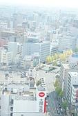 JR東日本上信越之旅。新潟市觀光-萬代橋。Mediaship。Pia萬代:新瀉日報-MEDIASHIP頂樓展望台 (12).jpg