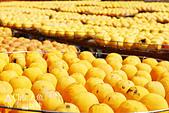 【國內旅遊】柿子紅了。最美的九降風橘@新埔衛味佳柿餅園:新埔衛味佳柿餅園 (20).jpg