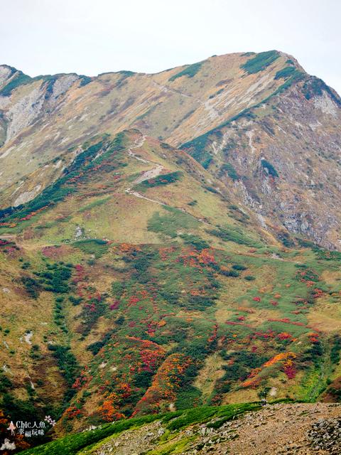 立山-4-室堂平 (134).jpg - 富山県。立山黑部