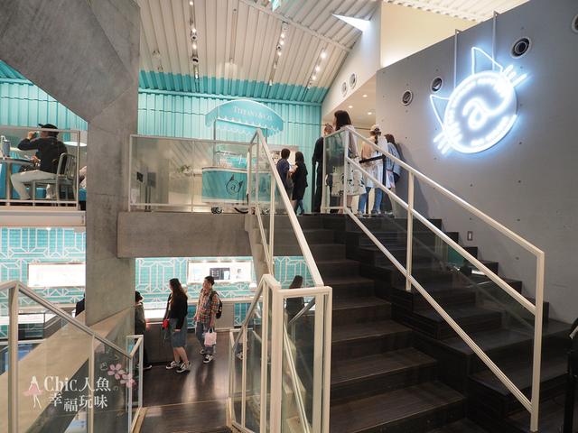 Tiffany Cat Street Cafe東京店 (1).jpg - 東京。Tiffany Cat Street Cafe 20190419 new open