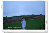 《日本四國兵庫》直島+淡路島:CIMG3360(001).jpg