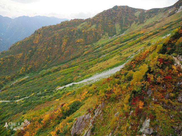 立山-5-前往大觀峰 (26).jpg - 富山県。立山黑部