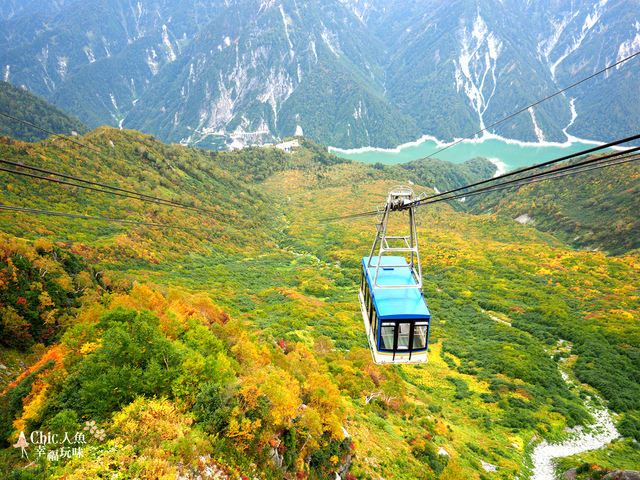 立山-6-搭纜車前往黑部平 (8).jpg - 富山県。立山黑部