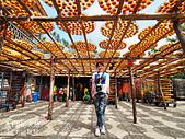 【國內旅遊】柿子紅了。最美的九降風橘@新埔衛味佳柿餅園:新埔衛味佳柿餅園 (42).jpg