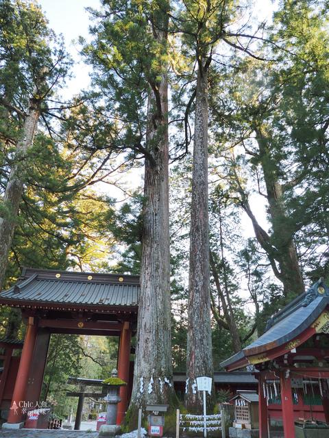日光-二荒山神社 (20).jpg - 日光旅。日光東照宮