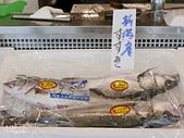 JR東日本上信越之旅。新潟市觀光-萬代橋。Mediaship。Pia萬代:新瀉市PIA萬代 (43).jpg