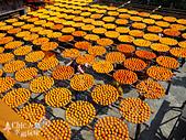 【國內旅遊】柿子紅了。最美的九降風橘@新埔衛味佳柿餅園:新埔衛味佳柿餅園 (107).jpg