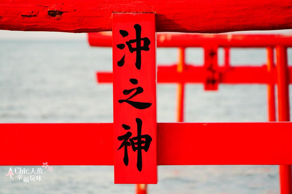 佐賀旅色。太良町-大魚神社海上鳥居:佐賀大魚神社海上鳥居 (80).jpg