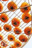 【國內旅遊】柿子紅了。最美的九降風橘@新埔衛味佳柿餅園:新埔衛味佳柿餅園 (10).jpg