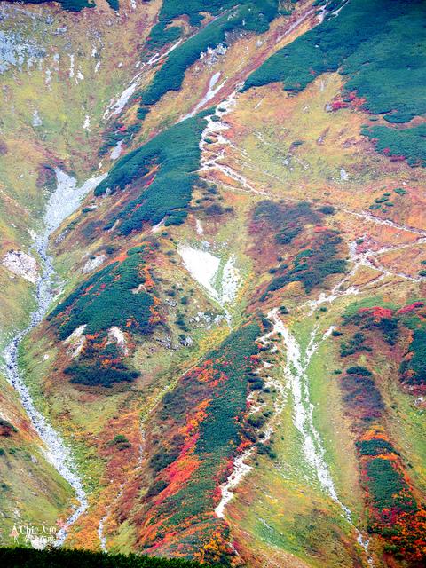 立山-4-室堂平 (121).jpg - 富山県。立山黑部