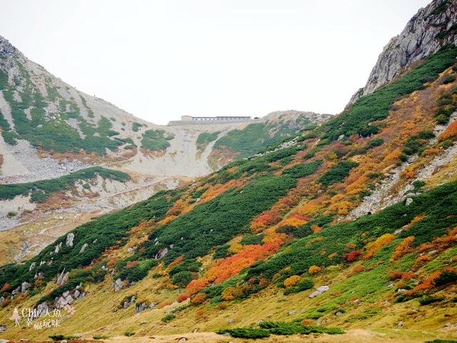 立山-4-室堂平 (139).jpg - 富山県。立山黑部
