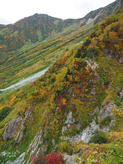 立山-5-前往大觀峰 (25).jpg - 富山県。立山黑部
