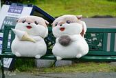 北海道道北。利尻島。白色戀人之丘:利尻富士町-OTARIMARI公園 (32).JPG