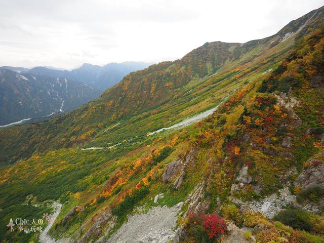 立山-5-前往大觀峰 (42).jpg - 富山県。立山黑部