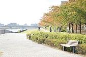 JR東日本上信越之旅。新潟市觀光-萬代橋。Mediaship。Pia萬代:新瀉市萬代橋 (9).jpg