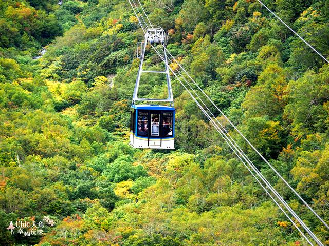 立山-6-搭纜車前往黑部平 (37).jpg - 富山県。立山黑部