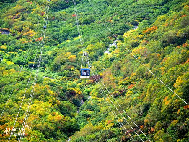 立山-6-搭纜車前往黑部平 (35).jpg - 富山県。立山黑部