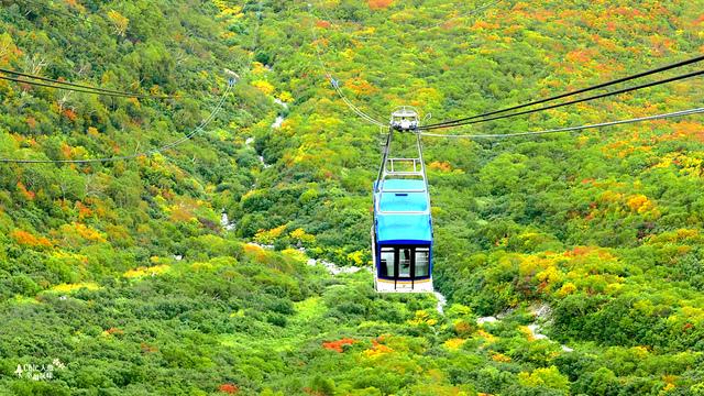 立山-6-搭纜車前往黑部平 (48).jpg - 富山県。立山黑部