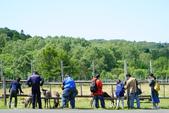 北海道道北。我在北緯45度遇見日本最北馴鹿TONAKAI牧場:北海道名寄馴鹿觀光牧場 (8).JPG