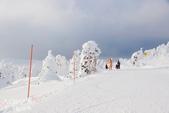 2013日本東北。藏王樹冰之旅:藏王樹冰-地藏山頂站  (81).jpg