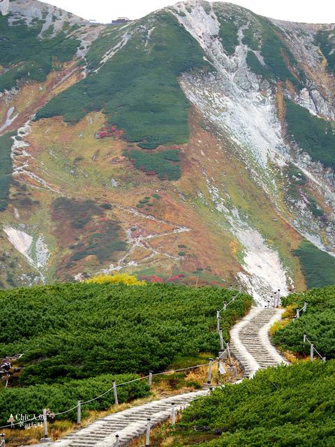 立山-4-室堂平 (75).jpg - 富山県。立山黑部