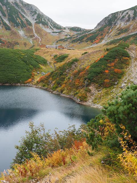 立山-4-室堂平 (65).jpg - 富山県。立山黑部