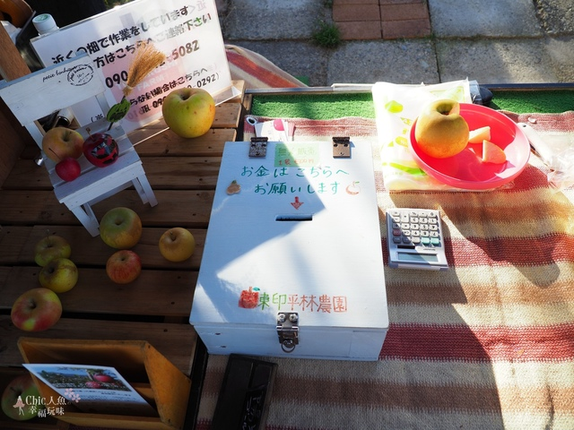 長野松川市東印平林農園採蘋果體驗 (149).jpg - 長野安曇野。東印平林農園蘋果園採蘋果りんご狩り