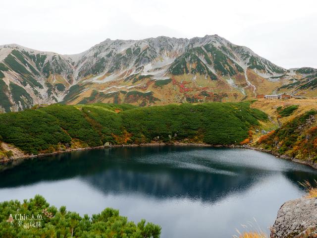 立山-4-室堂平 (69).jpg - 富山県。立山黑部
