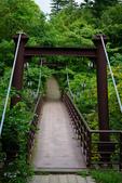北海道道北。島旅。利尻島:利尻島-姬沼 (3).JPG