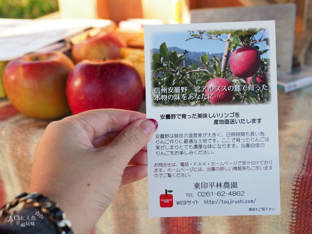 長野松川市東印平林農園採蘋果體驗 (151).jpg - 長野安曇野。東印平林農園蘋果園採蘋果りんご狩り