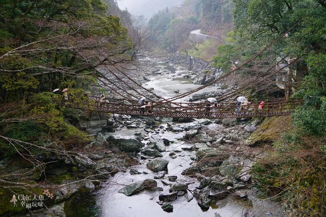 葛藤橋 (11).JPG - 帶泰國小姐遊四國。德島-香川。四國正中千年物語列車