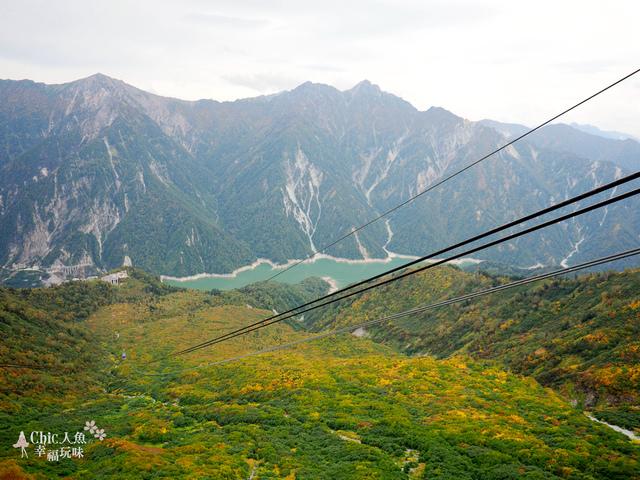 立山-6-搭纜車前往黑部平 (5).jpg - 富山県。立山黑部