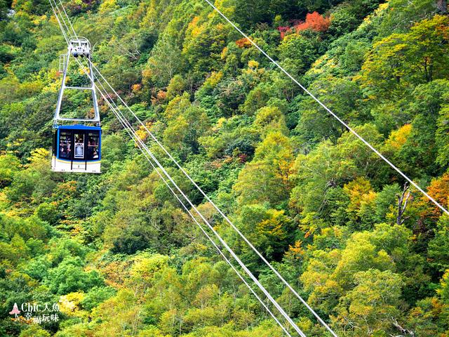 立山-6-搭纜車前往黑部平 (36).jpg - 富山県。立山黑部
